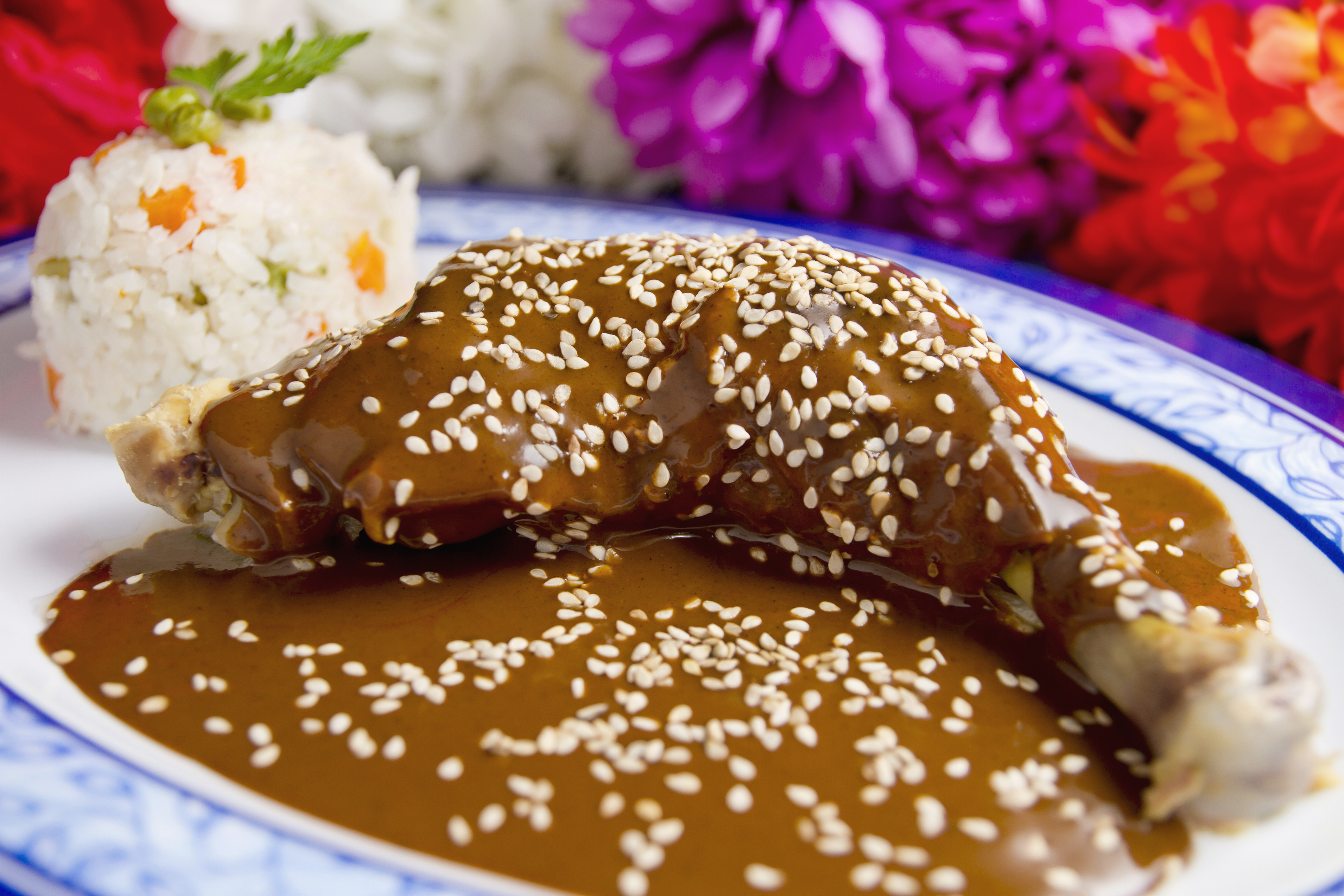 A traditional meal of mole served over chicken / Photo: shutterstock