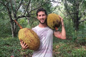 Jackfruit: The New Miracle in Fruit