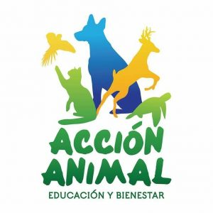 Acción Animal Low Cost Veterinary Service @ Acción Animal